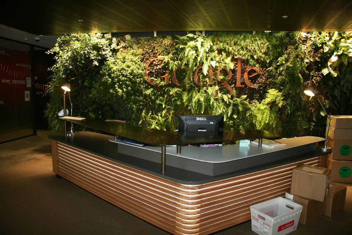 Plants flowers indoor plants create clean air - Jardines de interior ...