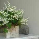 Convallaria majalis - bouquet